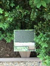 Interpretive signage in the garden