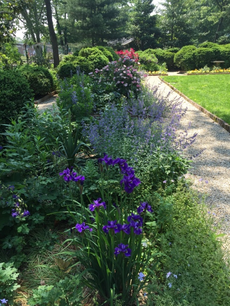 The Colonial Revival Garden 2017